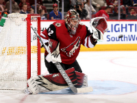 Arizona Coyotes - Florida Panthers